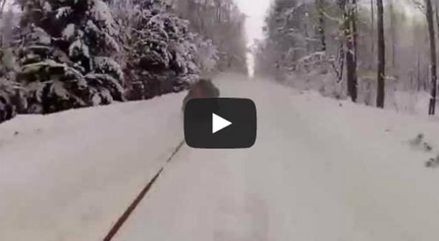 ice-sledding-russia