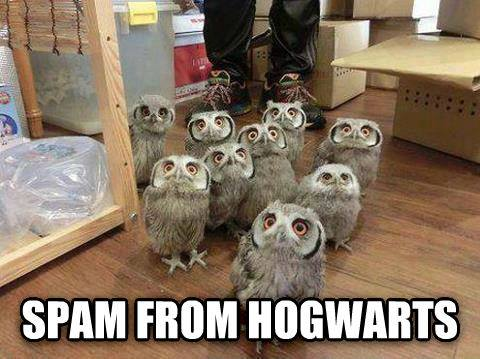 spam-from-hogwarts