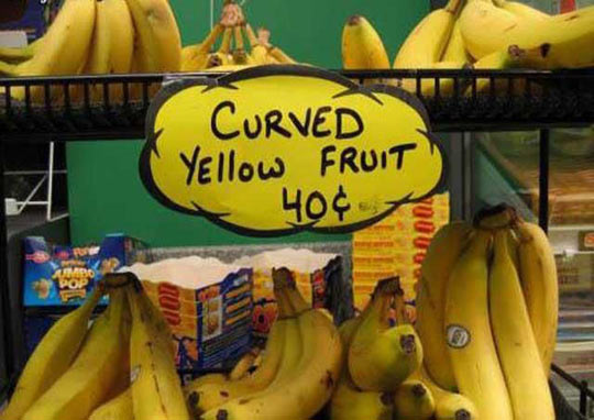 funny-pictures-22