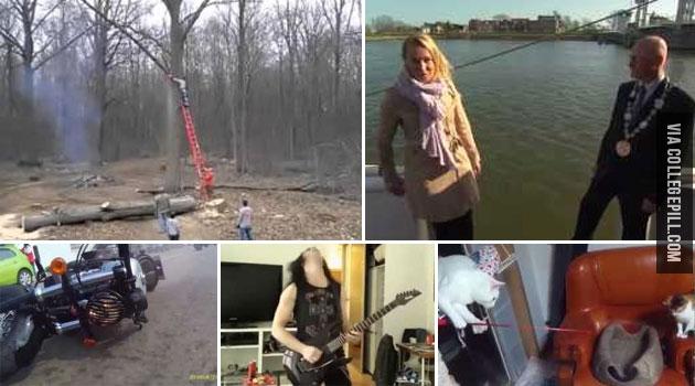 top-5-funny-videos